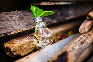 Kreativität und Offenheit